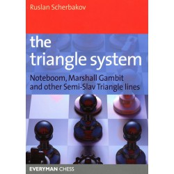 SCHERBAKOV - The Triangle System