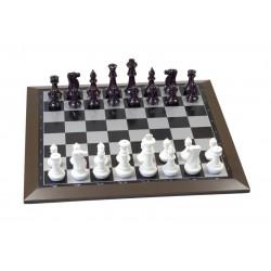Ensemble d'échecs magnétique