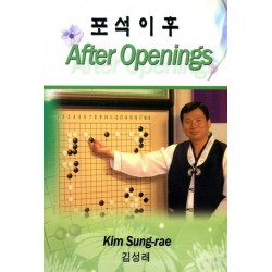 KIM SUNG-RAE - After Openings