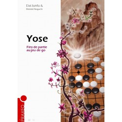 Junfu Dai et Noguchi Motoki - Yose Fins de partie au jeu de go
