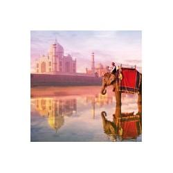 Puzzle 1000 pièces - Eléphant et Taj Mahal