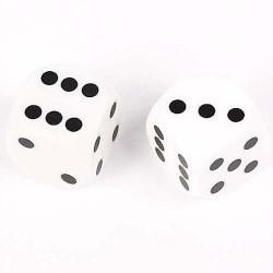 Dés de précision blanc backgammon