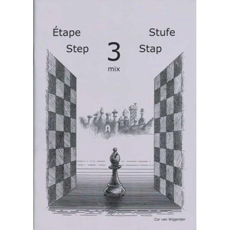 BRUNIA & VAN WIJGERDEN - Jouons aux échecs Méthode par étapes 3 mix