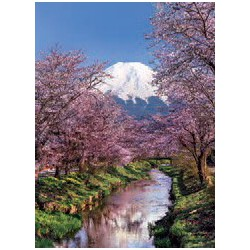 Puzzle 1000 pièces - Mont Fuji et Cerisiers