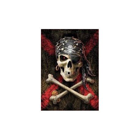 Puzzle 500 pièces - Tête de Mort de Pirate