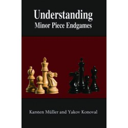 Muller - Understanding Minor Piece Endgames