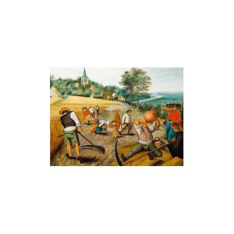 Puzzle 1000 pièces - L'Eté de Pieter Brueghel