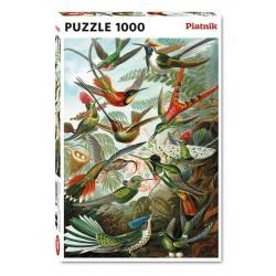Puzzle 1000 pièces - Colibris