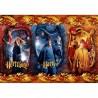 Puzzle 104 pièces - Harry Potter - Ron & Hermione