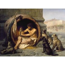 Puzzle 1000 pièces - Diogene, Jean-Léon Gérôme
