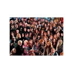 Puzzle 1000 pièces - Harry Potter Challenge