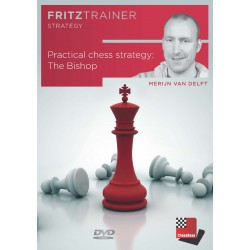 DVD Van Delft - Practical chess strategy: The Bishop