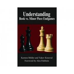 Müller & Konoval - Understanding minor pieces endings