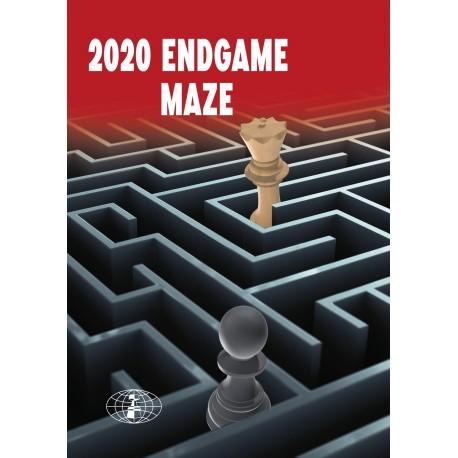 2020 Endgame Maze