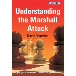 VIGORITO - Understanding the Marshall Attack
