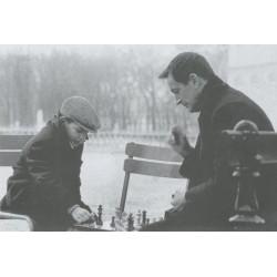 Lot de 6 cartes postales sur le thème des échecs